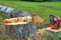 free Amersham Old Town tree felling quotes